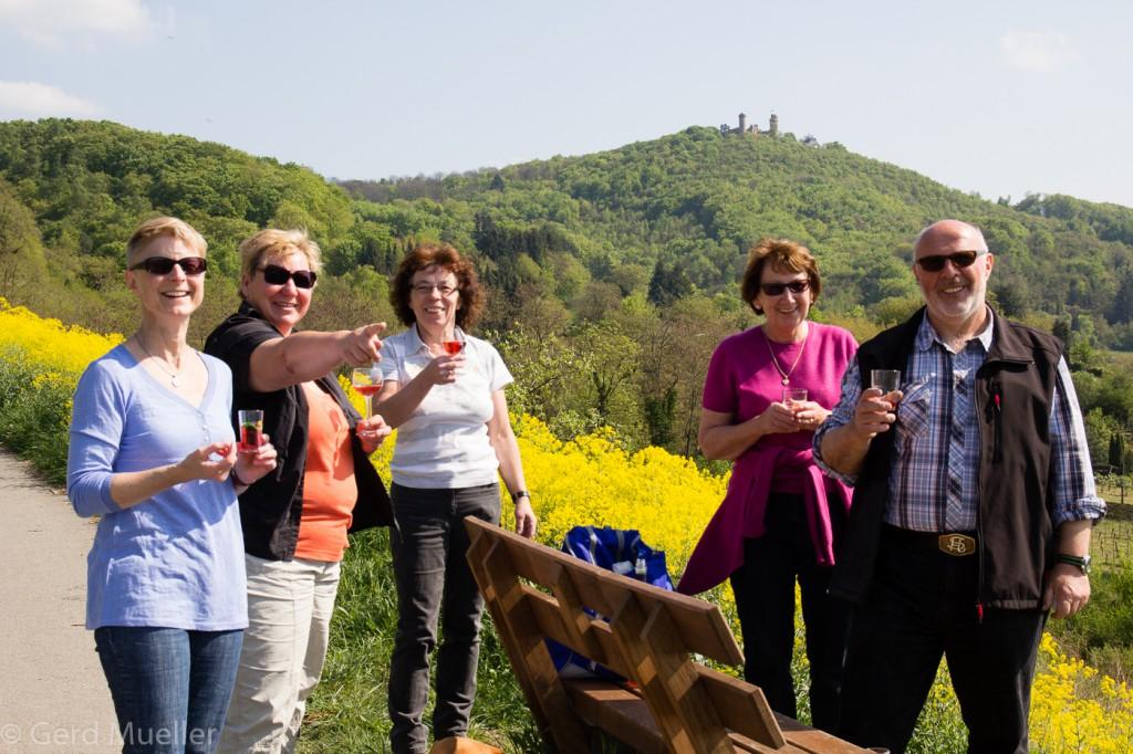Auf dem Weinlagenweg bei Zwingenberg