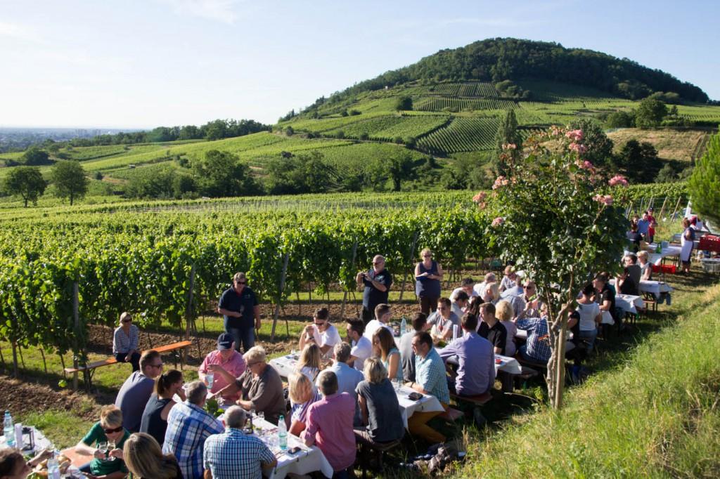 CG Wein Schnitzel und Wein-0009