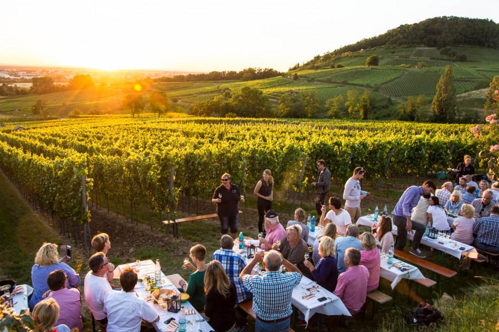 CG Wein Schnitzel und Wein-0100