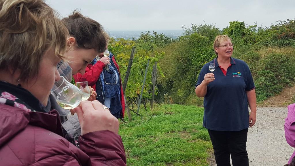 CG-Wein-Weinlagenwanderung-Weinprobe-Bensheim (19)