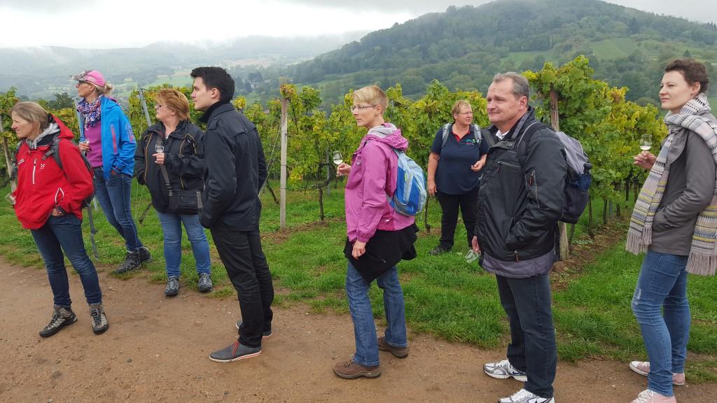 CG-Wein-Weinlagenwanderung-Weinprobe-Bensheim (2)