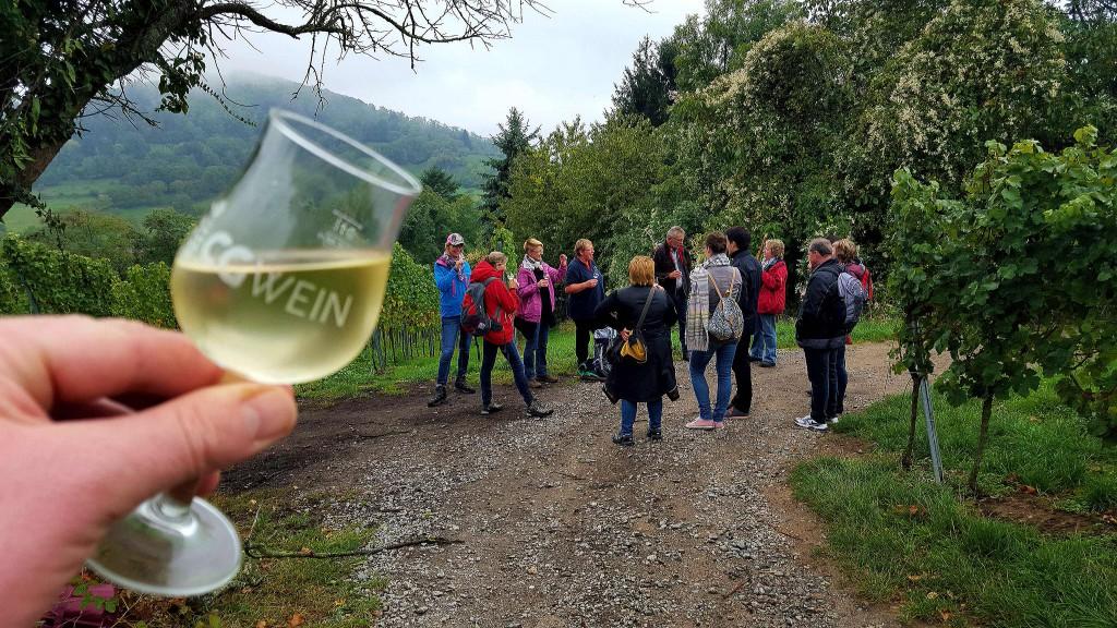 CG-Wein-Weinlagenwanderung-Weinprobe-Bensheim (22)