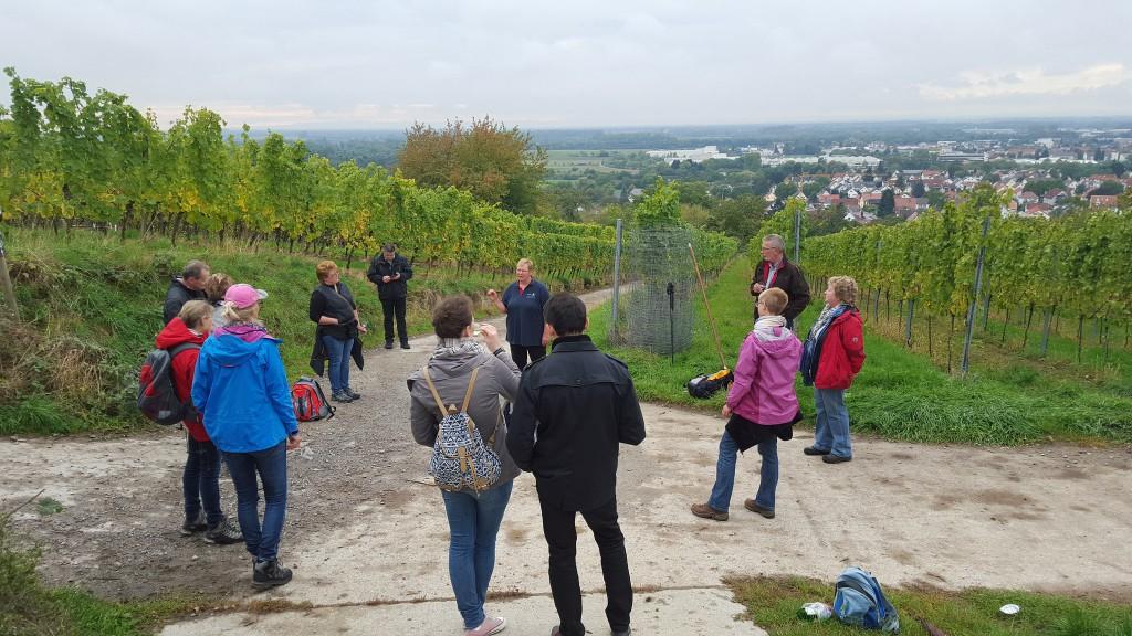 CG-Wein-Weinlagenwanderung-Weinprobe-Bensheim (24)