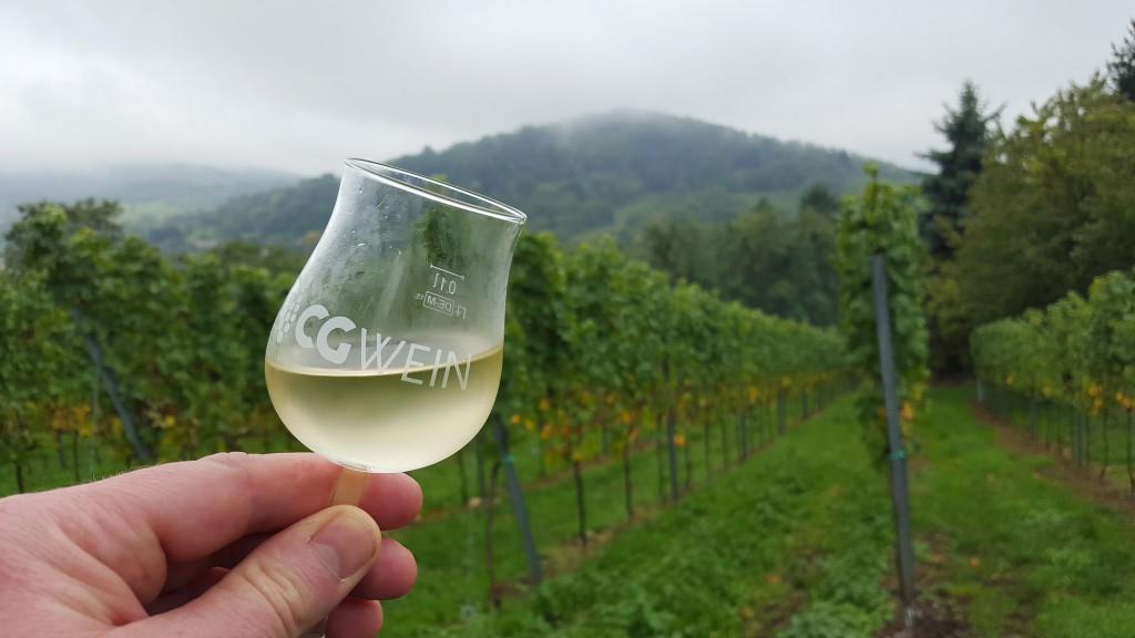 CG-Wein-Weinlagenwanderung-Weinprobe-Bensheim (30)
