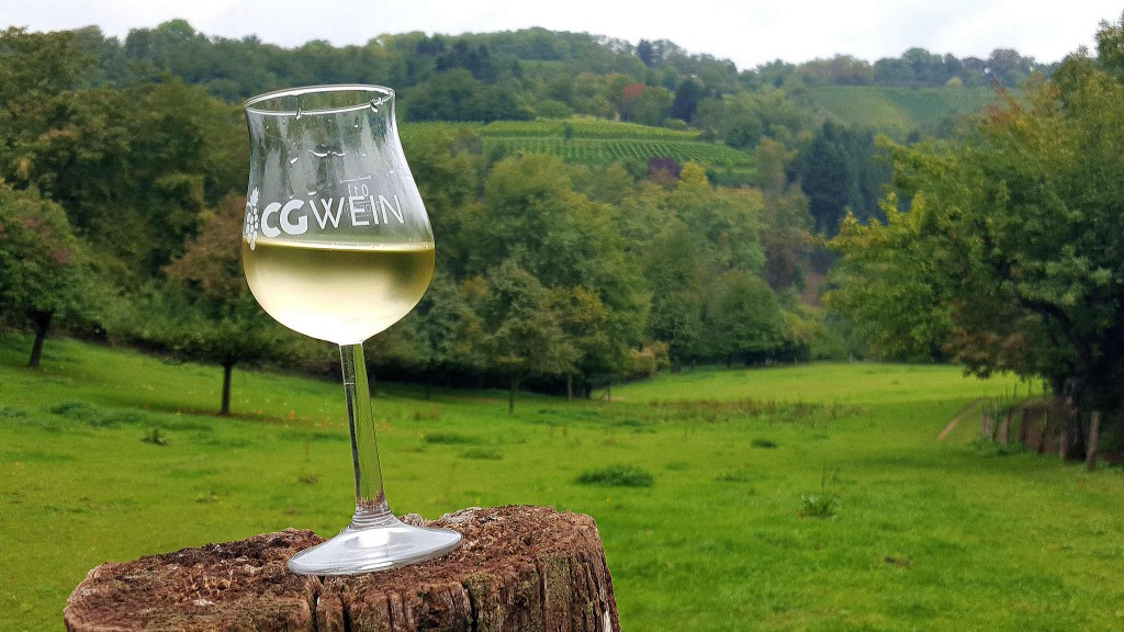 CG-Wein-Weinlagenwanderung-Weinprobe-Bensheim (7)