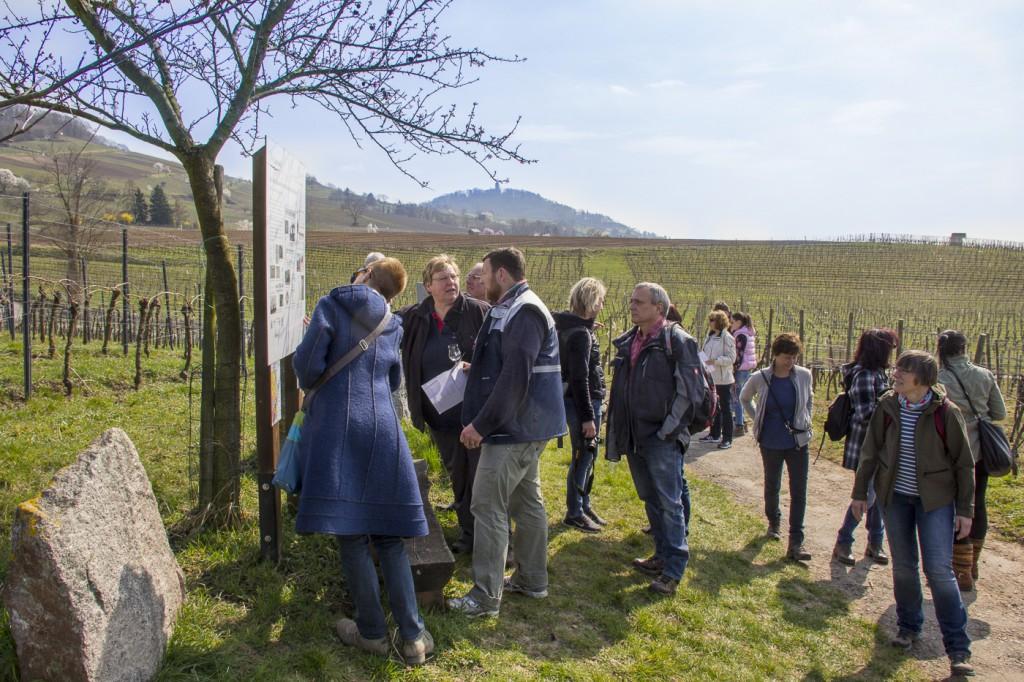 CG Wein Weinprobe mit Hüttenwanderung-8931