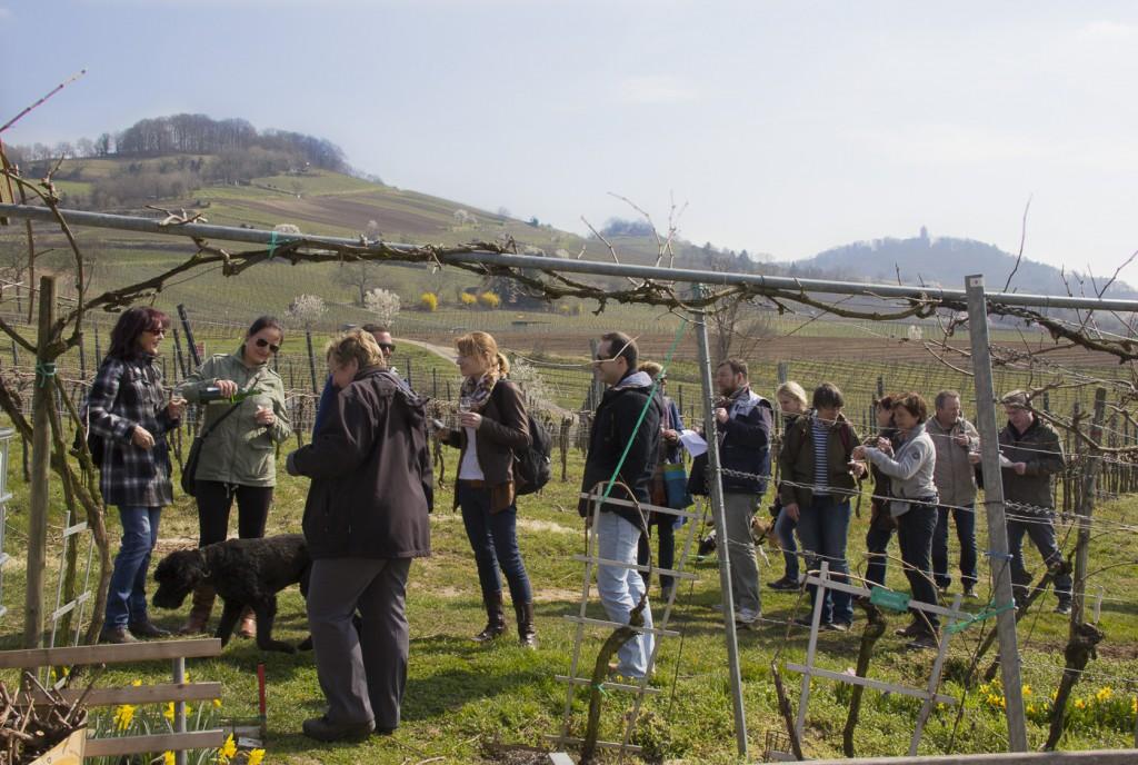 CG Wein Weinprobe mit Hüttenwanderung-8932