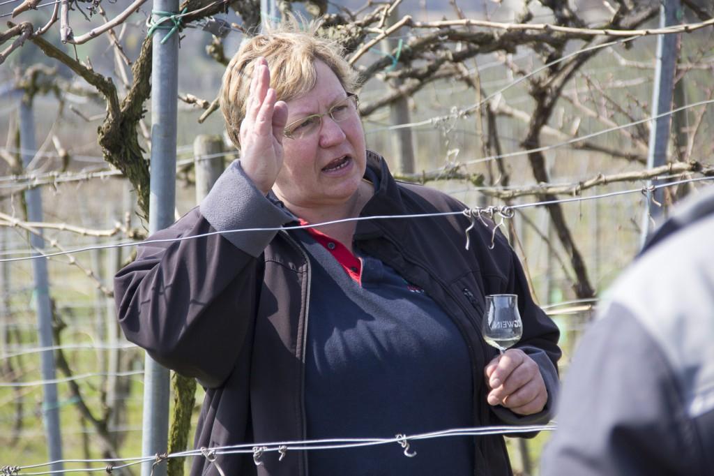 CG Wein Weinprobe mit Hüttenwanderung-8959