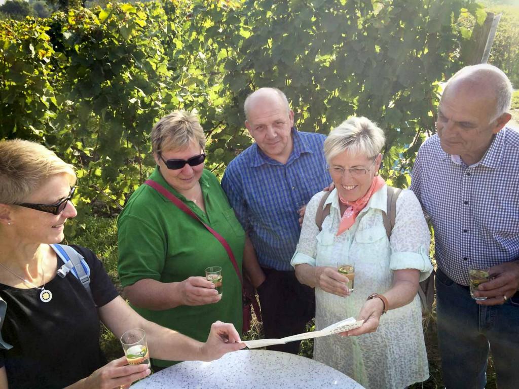 Weinlagenwanderung Heppenheim
