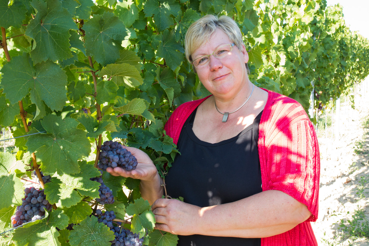 Roter-Riesling-Christa-Guth