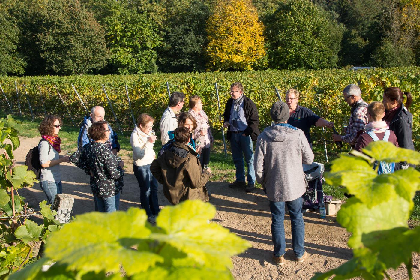 Weinprobe Hessische Bergstraße im Weinberg (1 von 24)