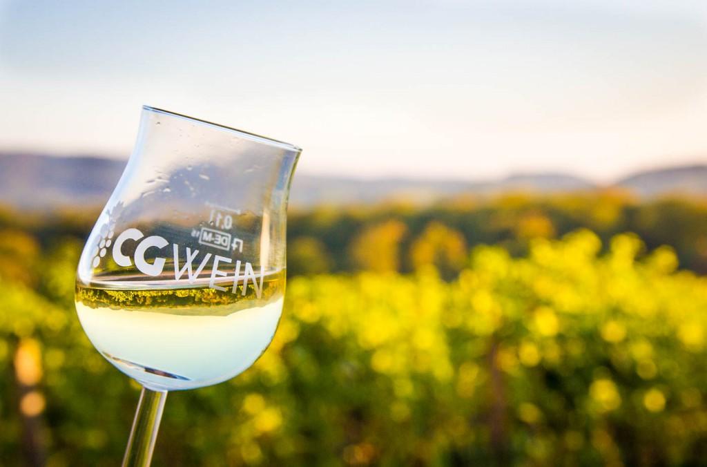 Weinprobe Hessische Bergstraße im Weinberg (11 von 24)