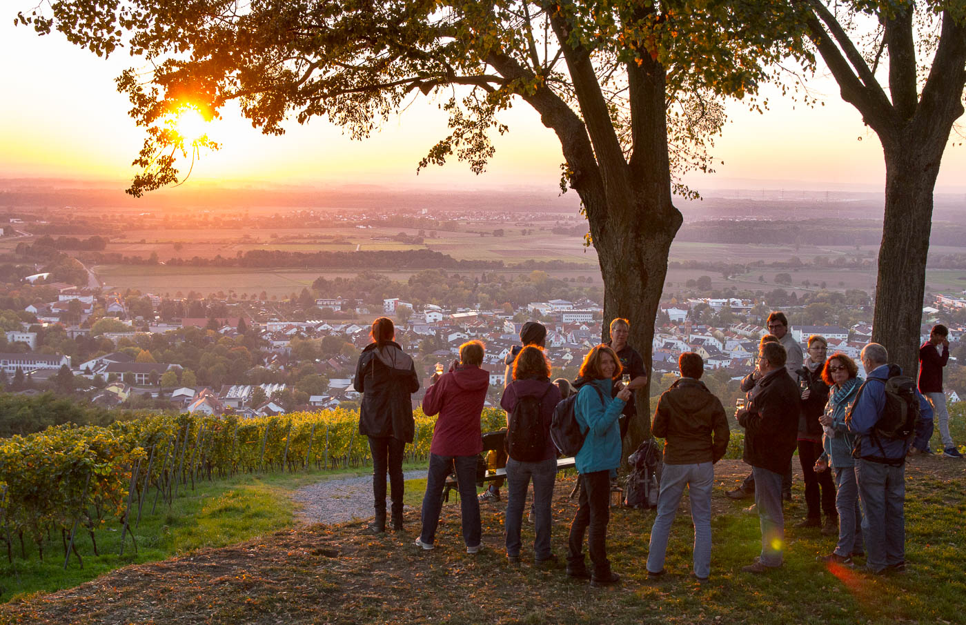 Weinprobe Hessische Bergstraße im Weinberg (18 von 24)