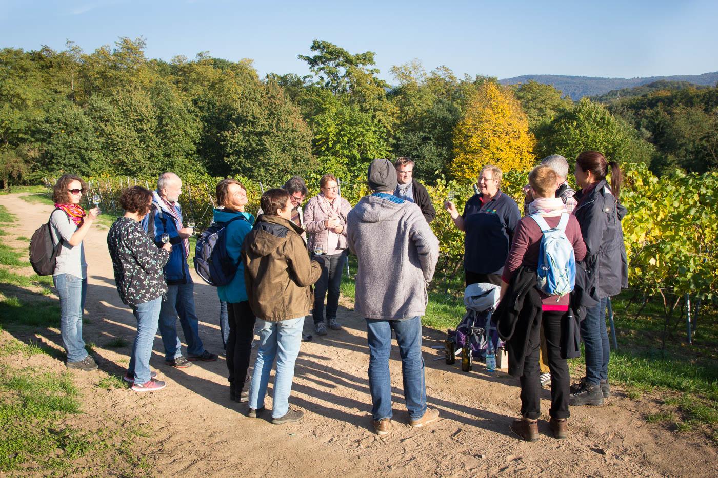 Weinprobe Hessische Bergstraße im Weinberg (2 von 24)
