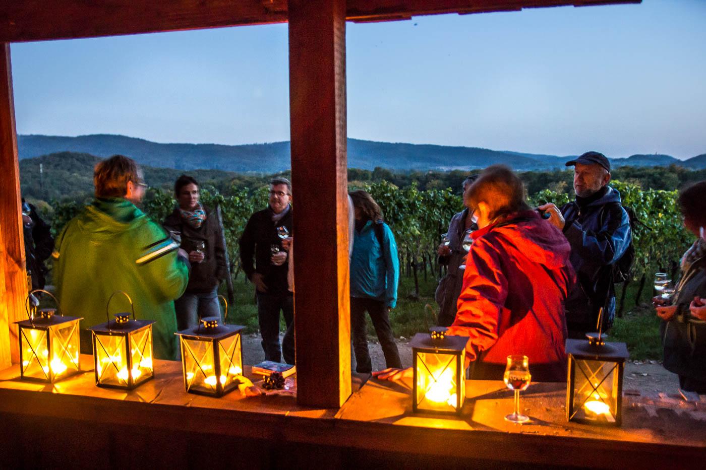 Weinprobe Hessische Bergstraße im Weinberg (24 von 24)