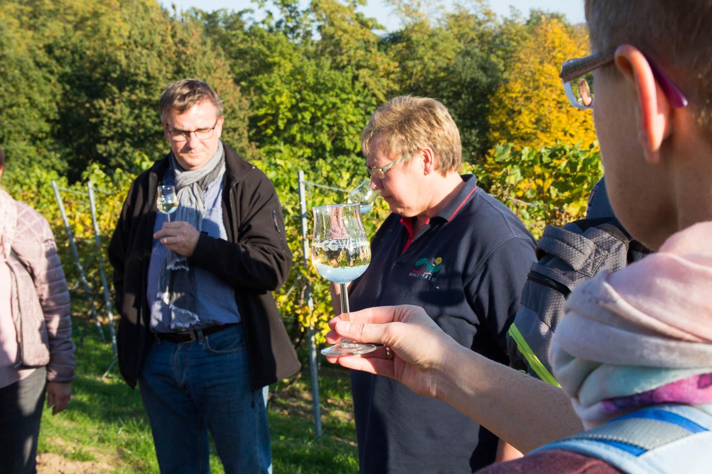 Weinprobe Hessische Bergstraße im Weinberg (4 von 24)