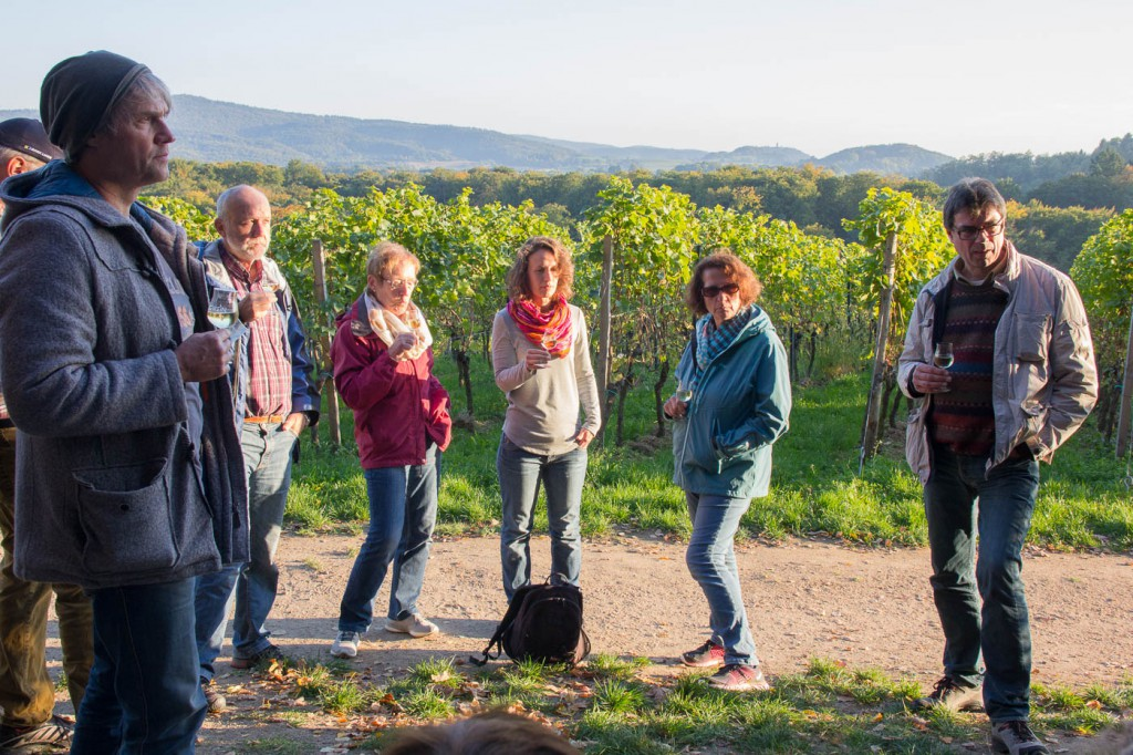 Weinprobe Hessische Bergstraße im Weinberg (10 von 24)