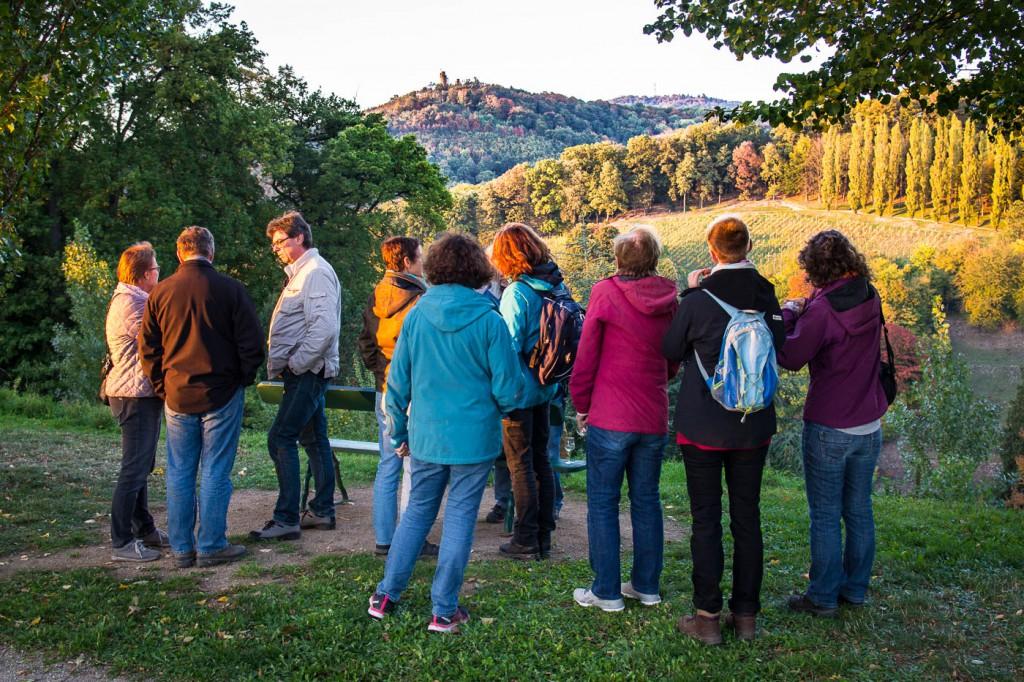 Weinprobe Hessische Bergstraße im Weinberg (17 von 24)