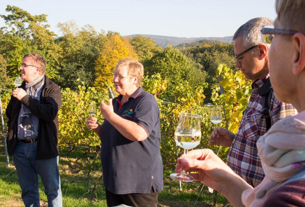 Weinprobe Hessische Bergstraße im Weinberg (5 von 24)