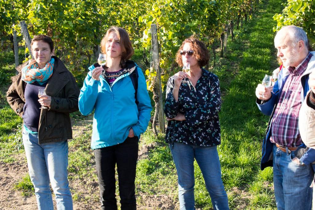 Weinprobe Hessische Bergstraße im Weinberg (6 von 24)