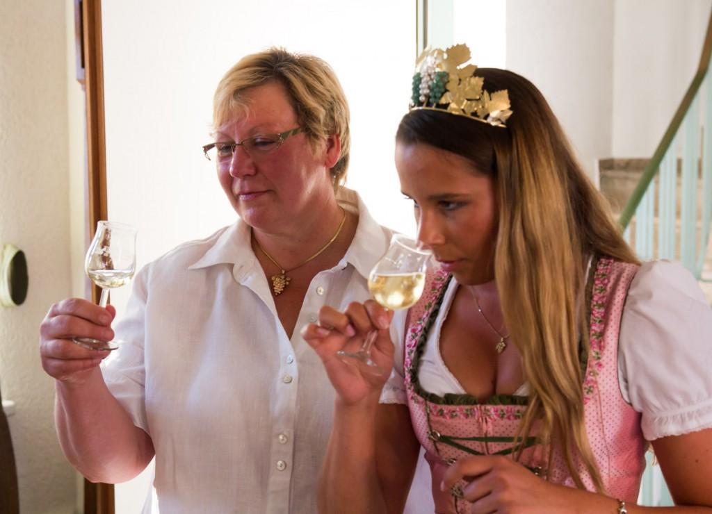 Weinprobe Käse und Wein - Hessische Bergstraße-5