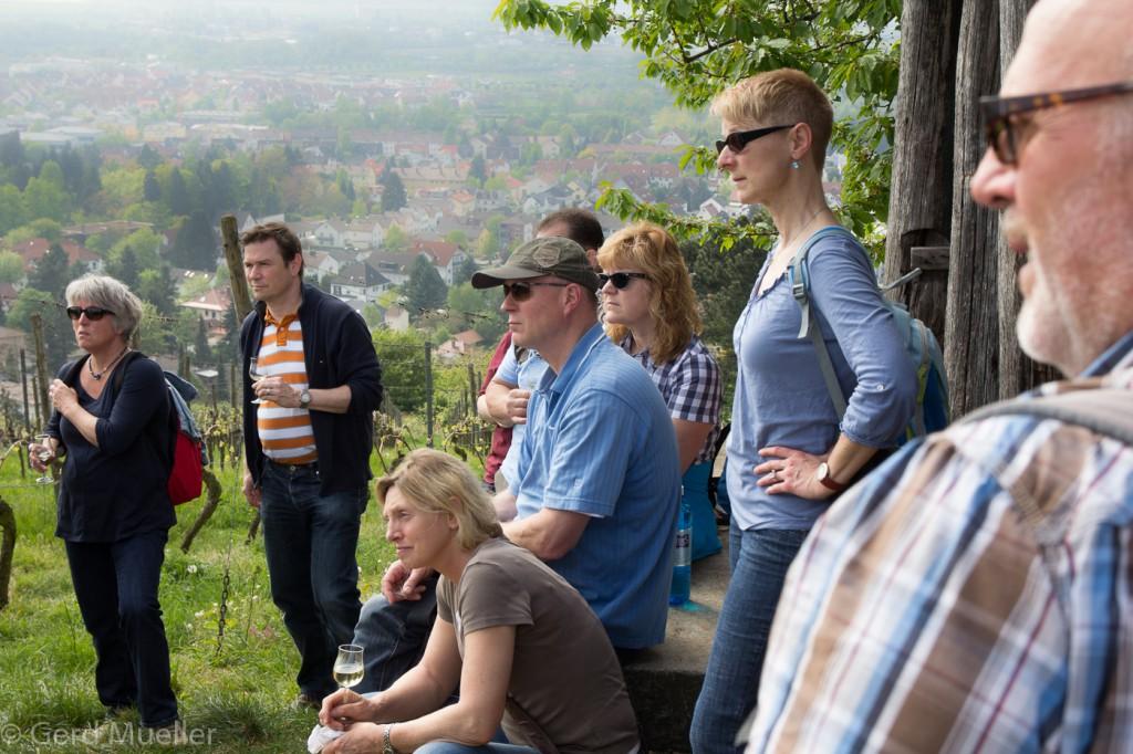 Weinprobe - Weinwanderung Bensheim CG Wein (4)