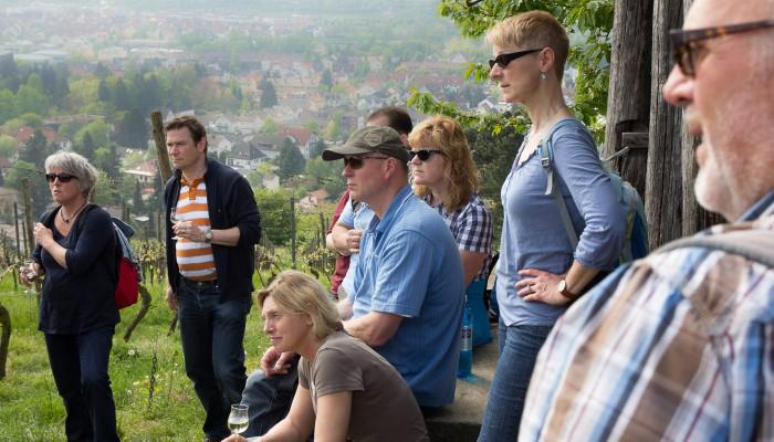 Die Gruppe erfährt vieles zum Weinbau