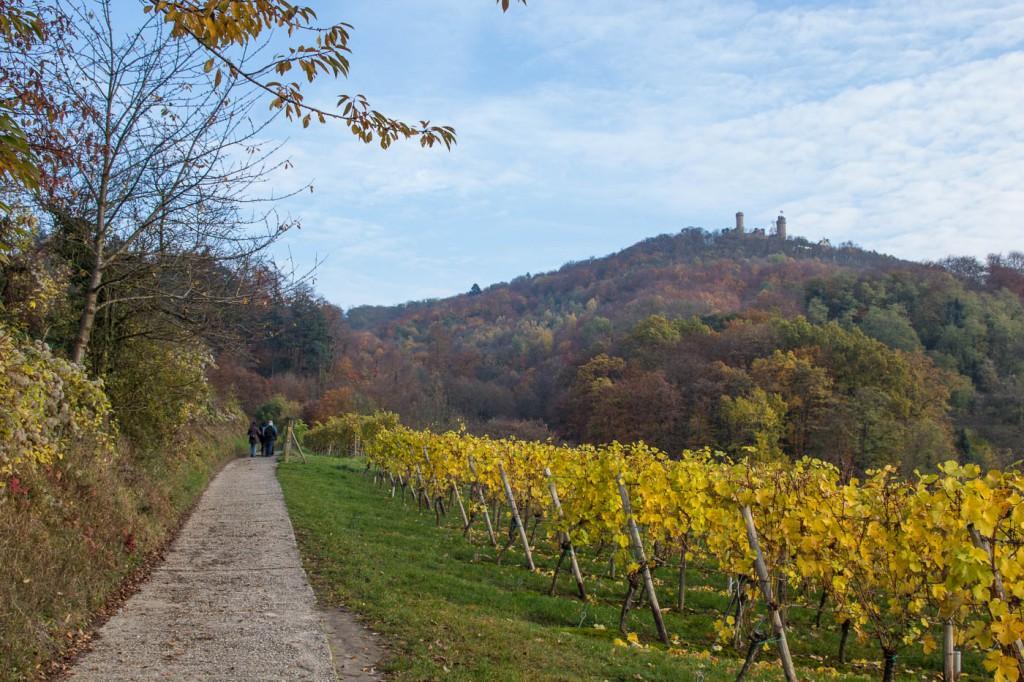 Hessische Bergstraße Weinlagenweg